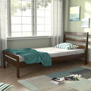 Osaka Single Bed Size Dark Walnut Finish By Urban Ladder