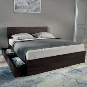 Covelo Storage Bed (Wenge Finish, Queen Bed Size, Drawer & Box Storage Type)
