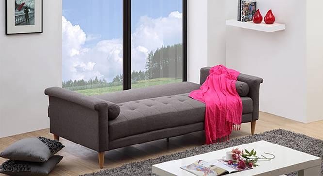 Dalston Sofa Cum Bed (Dark Grey) by Urban Ladder