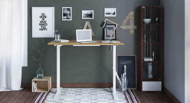 Philip Height Adjustable Standing Desk (Golden Oak Finish) by Urban Ladder