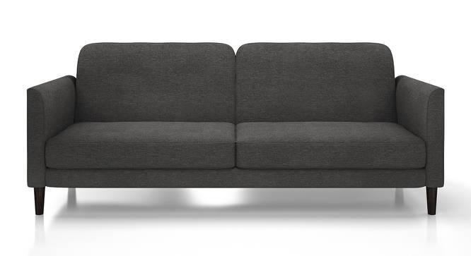 Felicity Sofa Cum Bed (Grey) by Urban Ladder