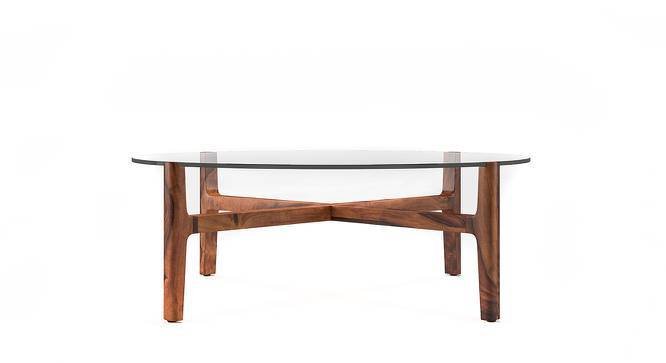 Cayman Coffee Table (Teak Finish) by Urban Ladder
