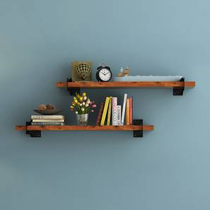 Ryter Shelves - Set Of 2 (2.5' Shelf Width, Teak)
