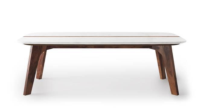 Galatea Marble Coffee Table - Galatea Marble Coffee Table