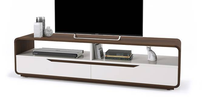 "Baltoro High Gloss 60"" TV Unit (White Finish) by Urban Ladder"
