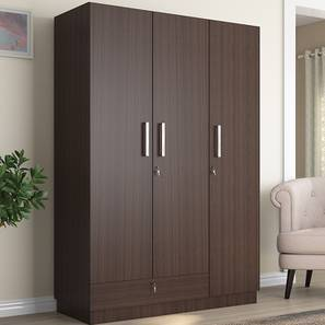 Bocado Wardrobe (Dark Walnut Finish, Three Door)
