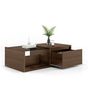 Alita Storage Coffee Table (Walnut Finish, Half Drawer Configuration)