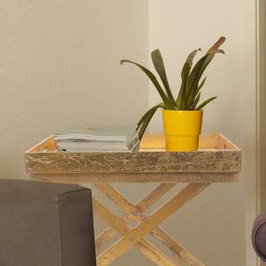 Bassi folding tray gold lp