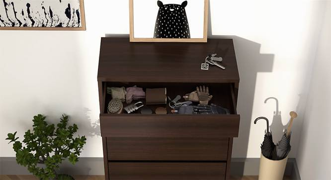 Pointe Shoe Cabinet (Dark Walnut Finish, With Drawer Configuration, 9 Pair Capacity) by Urban Ladder