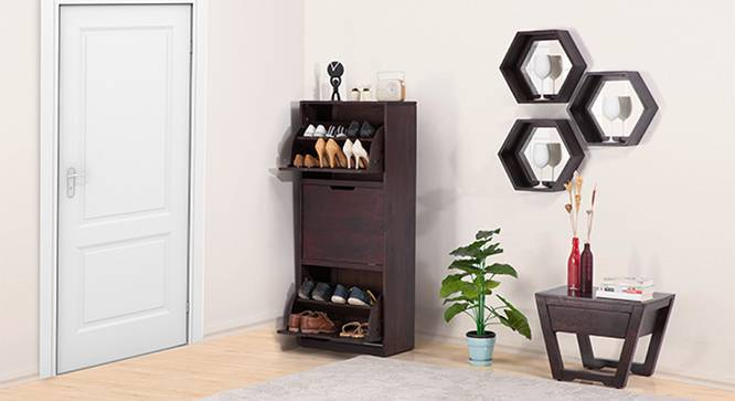 Manolo Shoe Cabinet (Mahogany Finish, Yes) by Urban Ladder