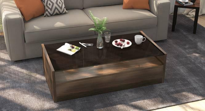 Alita Storage Coffee Table (Walnut Finish, Full Drawer Configuration, Yes) by Urban Ladder