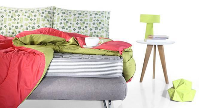 Essential Comfort Mattress (Single Mattress Type, 78 x 36 in Mattress Size, 4 in Mattress Thickness (in Inches), Yes) by Urban Ladder