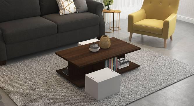 Webber storage coffee table urban ladder for Coffee tables urban ladder