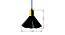 Fresno Hanging Lamp (Black Finish) by Urban Ladder