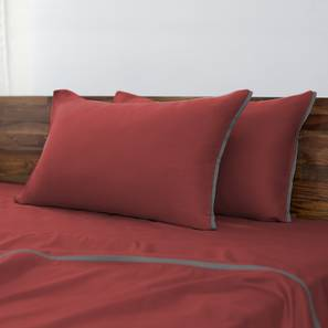 Serena 300 TC Bedsheet Set (Double Size, Rooibos Tea) by Urban Ladder