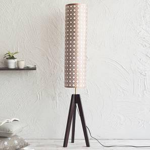Toliara Floor Lamp (Copper Shade Colour, Dark Walnut Base Finish) by Urban Ladder