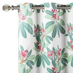 "Frangipani Curtain - Set of 2 (54"" x 60"" Curtain Size, Blush - Summer Blooms  Pattern) by Urban Ladder"