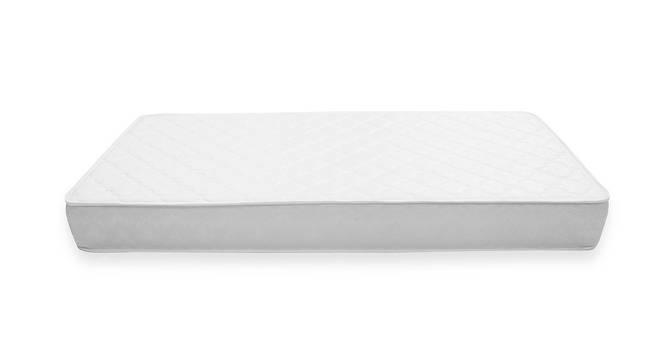 Dreamlite Bonnel Spring Mattress (Single Mattress Type, 8 in Mattress Thickness (in Inches), 72 x 36 in Mattress Size) by Urban Ladder