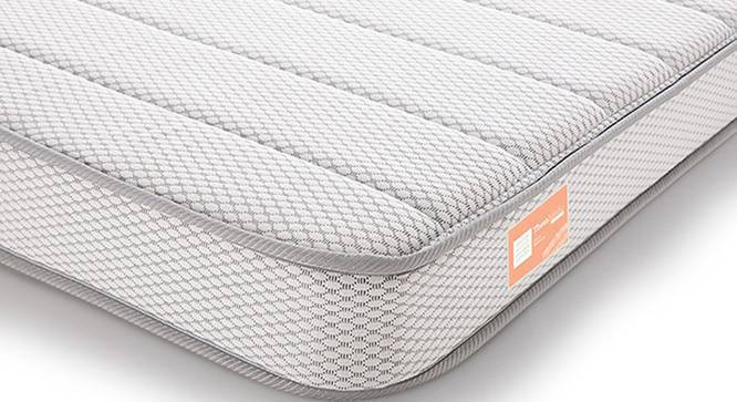 Theramedic Coir & Foam Mattress (Queen Mattress Type, 6 in Mattress Thickness (in Inches), 75 x 60 in Mattress Size) by Urban Ladder