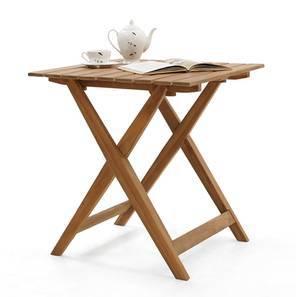 Menton folding arm table lp