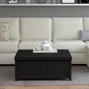 Rhodes storage coffee table4 lp