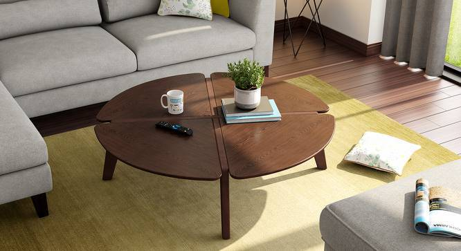 Gilmore Coffee Table (Dark Walnut Finish) by Urban Ladder
