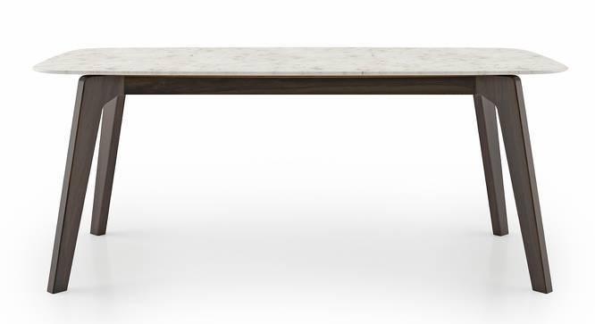 Galatea Marble Dining Table (American Walnut Finish) by Urban Ladder