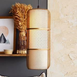 Kano Hanging Lamp (Gold Finish) by Urban Ladder