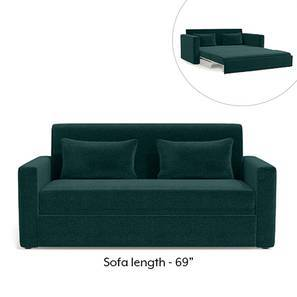 Apollo Sofa Cum Bed (Malibu Blue)