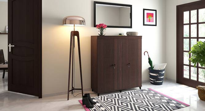 Zanotti Shoe Cabinet (Walnut Finish, 32 Pair Capacity) by Urban Ladder