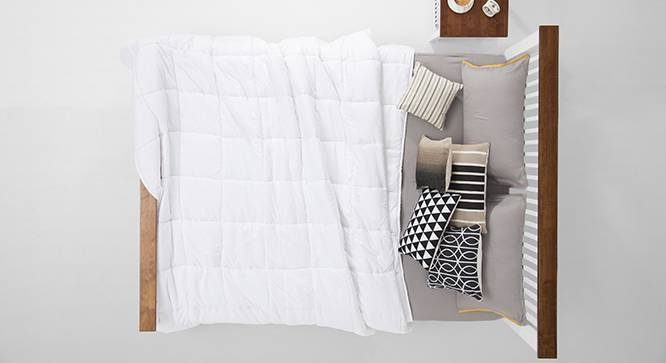Snug Essential Plain Quilt (King Size) by Urban Ladder