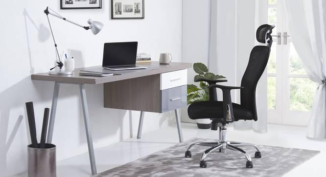 Venturi Study Chair-3 Axis Adjustable (Carbon Black) by Urban Ladder